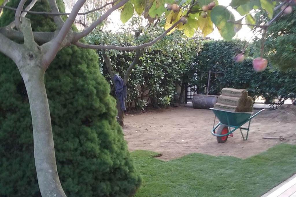 Prato pronto a zolle a venezia agrotecnica for Prato zolle